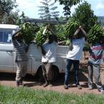 Galerie zum Hilfsprojekt in Uganda